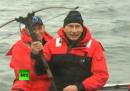 Le avventure di Vladimir Putin