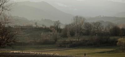 La nefropatia balcanica