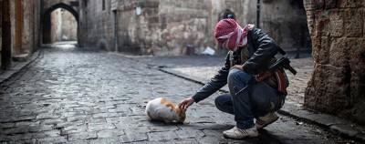 12 cose sulla Siria