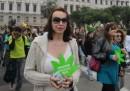 In Uruguay la Camera ha approvato la legge per legalizzare la marijuana