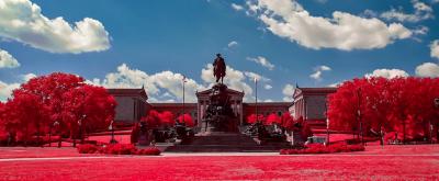 La città vuota dagli alberi rossi