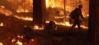 Usa, rogo Yosemite contenuto al 40%, è 4° peggiore in storia California