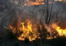 I 57 incendi in Australia