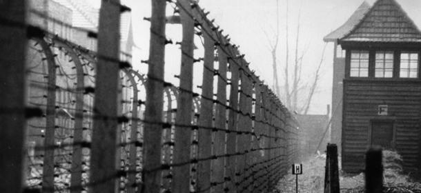 Breve storia del negazionismo - Il Post f91322985c34