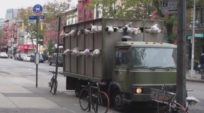 Sirens of the Lambs, il secondo video di Banksy