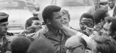 Venti grandi foto di Ali