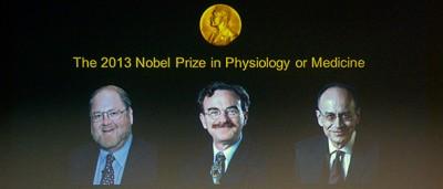 Nobel per la Medicina a Rothman, Schekman e Südhof