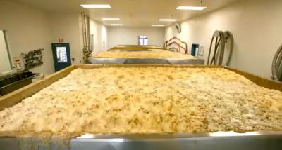 Sei giorni di fermentazione della birra, in un minuto