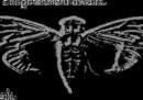 Il nuovo enigma di Cicada 3301