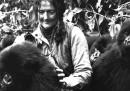 Dian Fossey, e i suoi gorilla