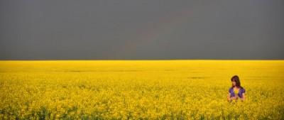 Storie e cose dell'Ucraina