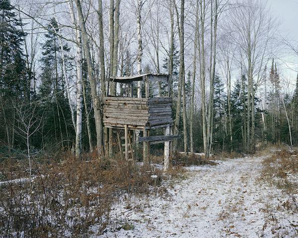 Jason Vaughn: Dove aspettano i cacciatori