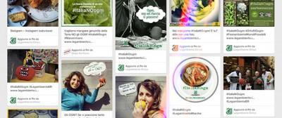 Le balle su OGM, Stamina e vivisezione
