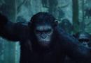 Il trailer di Apes Revolution - Il pianeta delle scimmie