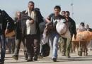 L'Iran manda profughi afghani a combattere in Siria?