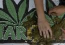 La legalizzazione della marijuana in Uruguay è stata rinviata