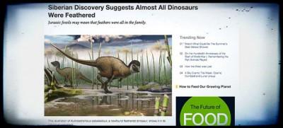I dinosauri avevano le piume?