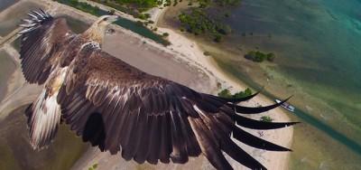 Le più belle foto fatte coi droni