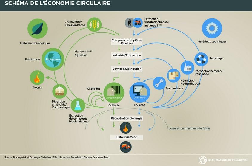 economia-circolare-Ellen-MAcarthur