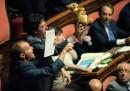 riforma Senato - canguro
