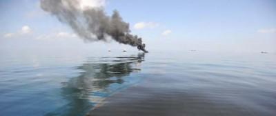 Il Golfo del Messico, 4 anni dopo il disastro
