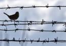 La Norvegia vuole trasferire detenuti nei Paesi Bassi