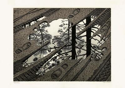 Mostra Escher - 1