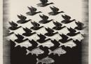 Mostra Escher - 15