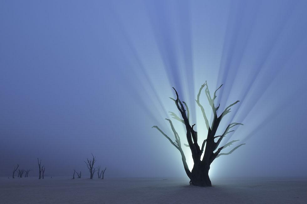 Favoloso 10 bellissime foto di natura - Il Post NL88