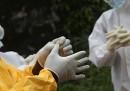 8 miti su ebola