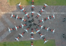 Il nuovo video degli OK Go