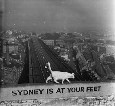 Sydney ai tuoi piedi