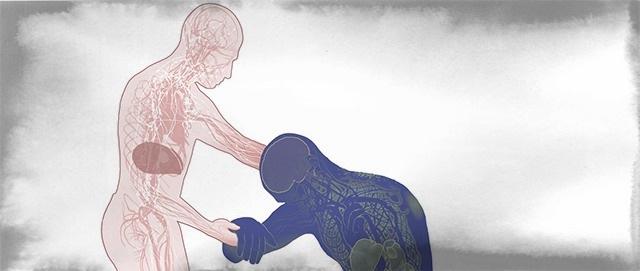 Gli effetti di ebola sul corpo umano - Il Post
