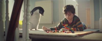 Storia di un bambino e un pinguino
