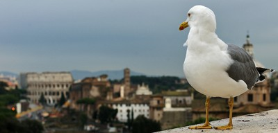 Roma è Roma, inevitabilmente?