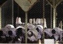 10 storie dal rapporto sulle torture della CIA
