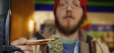 La vendita libera della marijuana in Colorado, un anno dopo