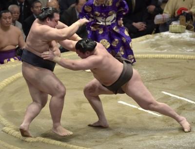 Sumo Hakuho