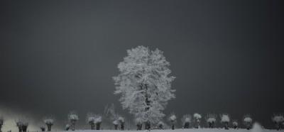 Le foto della neve in Spagna