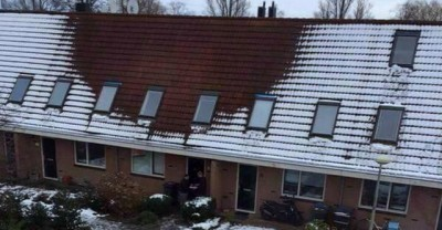 Nei Paesi Bassi le piantagioni illegali di cannabis si scoprono con la neve