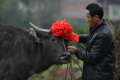 Zhengyuan, provincia di Hunan, Cina