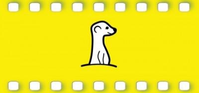 Meerkat, l'app per i video in diretta