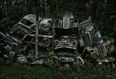 Cimiteri naturali di automobili