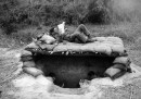 Vietnam War: US Foxholes and Shelters 1966