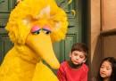 Chi c'è dentro Big Bird, il pupazzo di Sesame Street