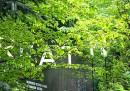 """""""Breathe"""", il padiglione dell'Austria a Expo"""