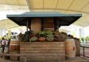 Il mercato di Dante Ferretti a Expo