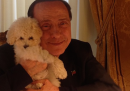 Le foto più belle dell'account Instagram di Silvio Berlusconi