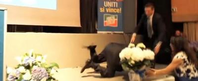 Il video di Berlusconi che inciampa dopo un comizio