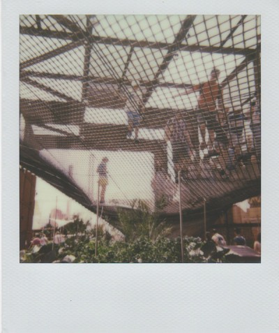 Polaroid Expo